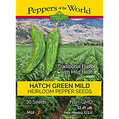 Hatch Green Chile Mild - 30 Seeds - NM-64 - Non-GMO - Open Pollinated - Untreated Seeds : Garden & Outdoor