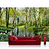 "Photo wallpaper - Forest Trees Nature - 78.7""W by 55.1""H (200x140cm) - Non-woven PREMIUM PLUS - no. 256 - Wall Decor Photo Wall Mural Door Wall Paper Posters & Prints"