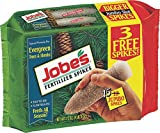 buy Jobe's Evergreen Fertilizer Spikes 13-3-4 Time Release Fertilizer for Juniper, Spruce, Cypress and All Other Evergreen Trees, 15 Spikes per Package now, new 2018-2017 bestseller, review and Photo, best price $16.01