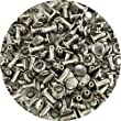 Springfield Leather Company\'s Nickel Plate Small Double Cap Rivets 100pk