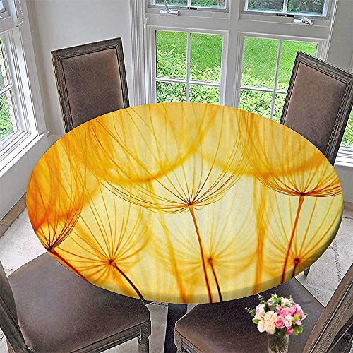 Simple Modern Round Table Cloth Arden Seeds in Hot Summer Time Themed Artwork Merigold and White 67