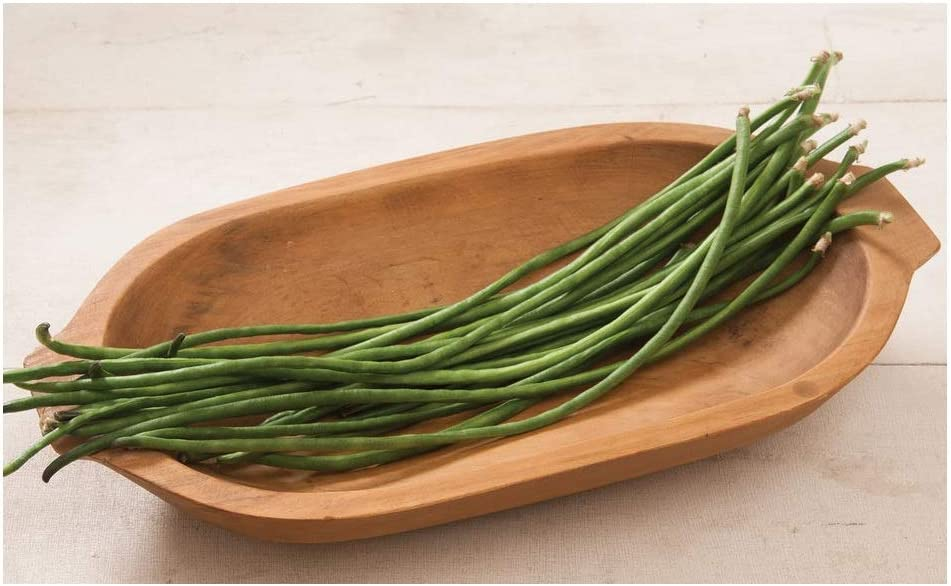 20 SEED RARE SWEET YARD LONG BEAN MULTI COLOR HEIRLOOM NON GMO