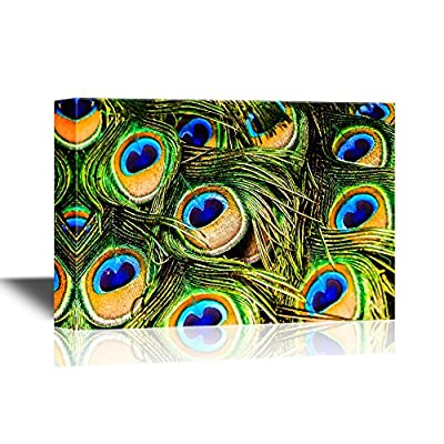 Canvas Wall Art - Peacock Feathers - Gallery Wrap Modern Home Art | Ready to Hang - 12x18 inches
