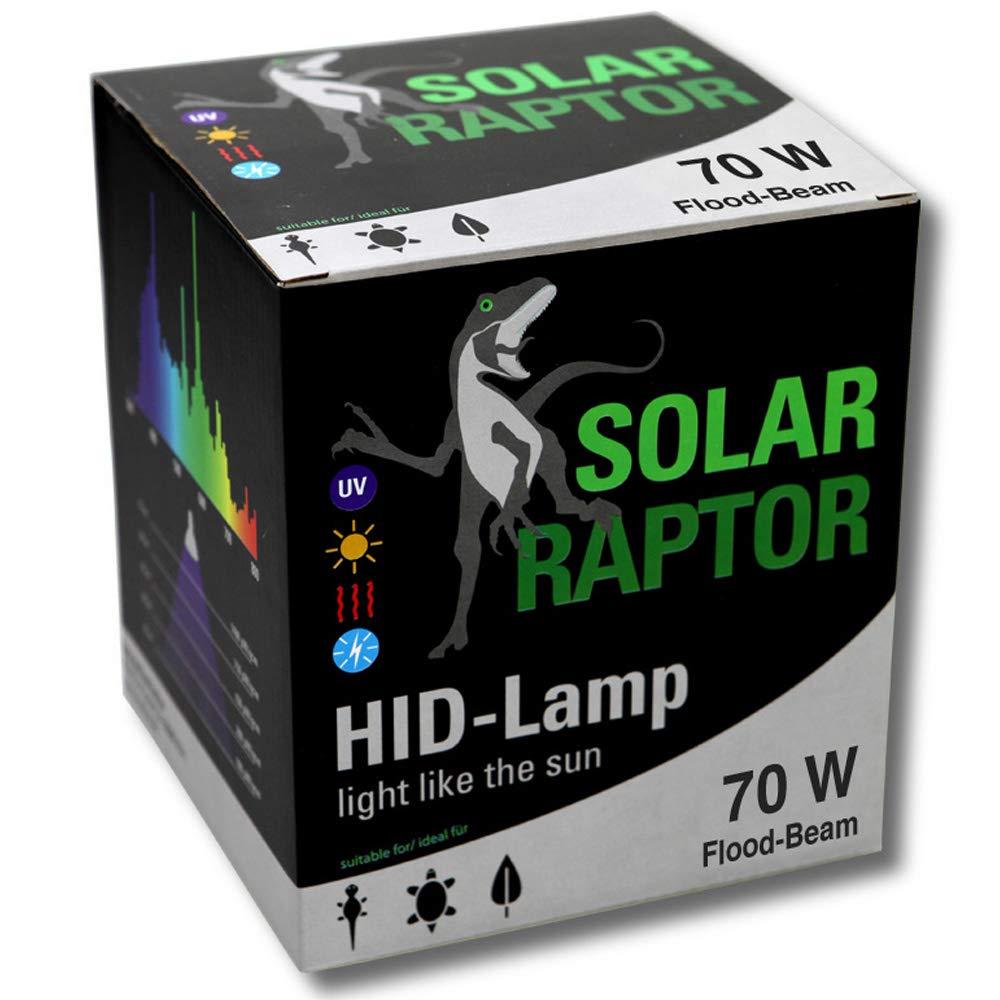 spedizione e scambi gratuiti. ECON Lux solarraptor 70 70 70 W PAR38 Faretto Flood HID  controlla il più economico