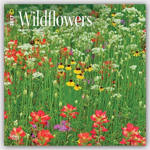 2017 Monthly Wall Calendar - Wildflowers