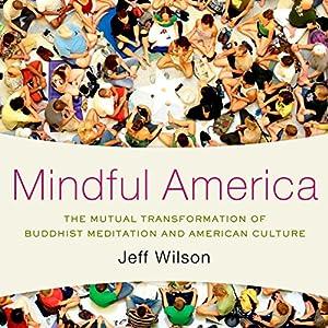 Mindful America Audiobook