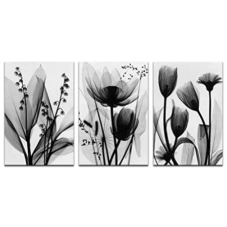 Visual Art Decor Black and White Flowers Painting Transparent Floral Picture Canvas Prints Framed and Stretched Modern Home Office Wall Decoration 02 Black,L-48 X H-24