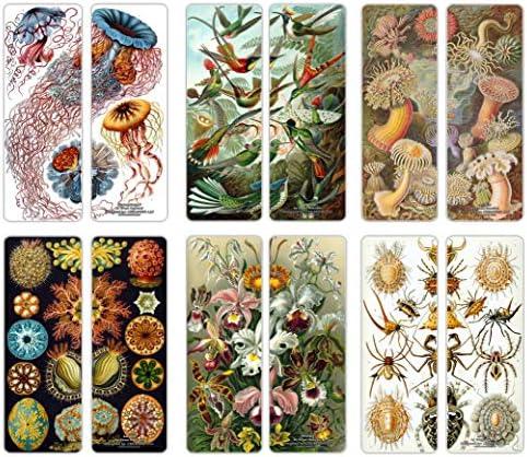 Creanoso Ernst Haeckel Bookmarks 12 Pack product image