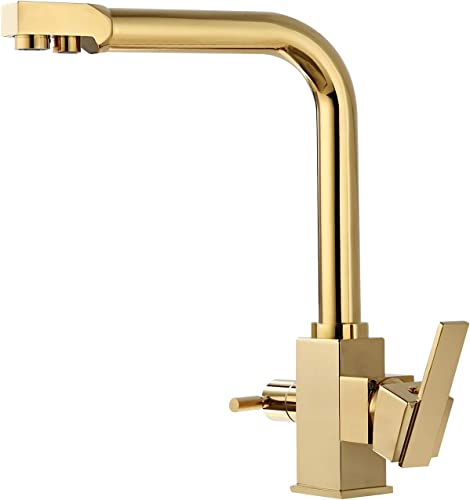 Thallo Single Hole Double Handle Swiveling Kitchen Faucet with Water Filtering in Gold Finish