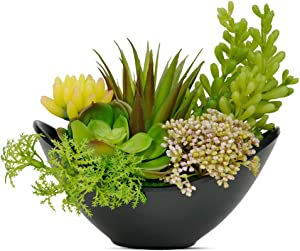 Luxsego Artificial Succulent Plants with Pot - 7.2 Inch Realistic Succulent Arrangements, Fake Potted Succulent Plants for House Decorations, Bathroom, Wedding, Garden, Office, Indoor and Outdoor