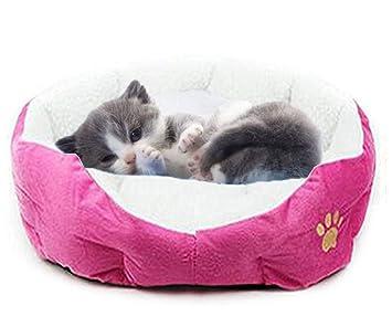 Joyfeel buy Cama para Mascotas Cama Suave de Perro Cálida Nido de Gato Peluche Cama para Mascotas Mascota durmiendo de Cama,luz roja: Amazon.es: Hogar