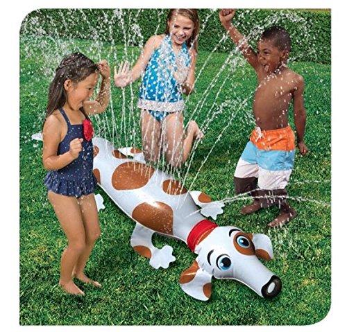 puppy-backyard-critter-sprinkler