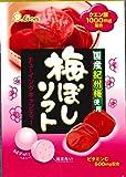 ライオン菓子 梅ぼしソフト  42g×10袋