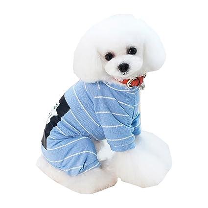 Amazon.com: Sucedtop - Ropa para perro, diseño de león, para ...