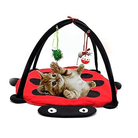 Gato tienda de juegos cama de Camp con campanas de juguetes colgante de pelotas y ratón