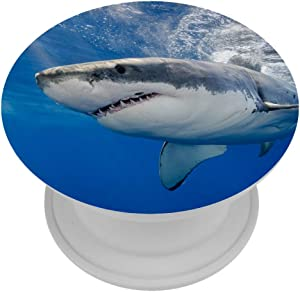 Great White Shark Carcharodon Carcharias Underwater at Guadalupe Island Mexico Phone Stand Pop Out Phone Holder Cellphone Popper Grip and Stand