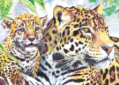 Royal & Langnickel Mini Colour Pencil By Number Kit: 5x7 Jaguar Family