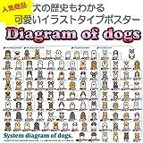 犬の系統図(血統) ポスター ディアグラム ドッグポスター