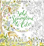 Bold Springtime to Color (Colouring Books)