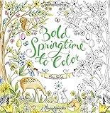 Bold Springtime to Color (Colouring Books)