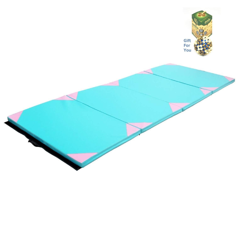 CT 4 ' x10 ' x2厚ジムフィットネス練習体操マット – ブルー&ピンク B07D7W9DVR