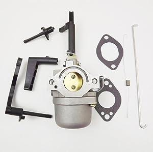 goodfind68 Carburetor for Briggs & Stratton 204412, 204415, 204417, 204432, 204437 Engines