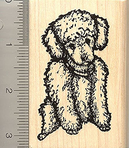 Toy Poodle Rubber Stamp, Sitting