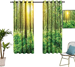 Mozenou Woodland Decor,Window Blackout Curtains,Forest Springtime Freshness Foliage Sunbeams Sunrise Nature View Scene,Isolate Sunlight Dark Curtains,63x63 Inch