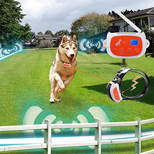 Portable Wireless 2 Dog Fence, NO WIRES TO BURY-800FT Containment System, The 3nd Greneration, DT-WLJK2 by Maxtronic