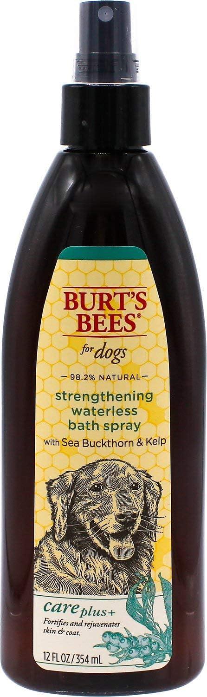 Burt's Bees Care Plus+ Sea Buckthorn & Kelp Strengthening Waterless Bath Spray for Dogs | Waterless Shampoo Spray Strengthens Coat | 12 oz