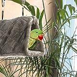 MEWTOGO Bird Nest Hammock Parrot Hanging Snuggle