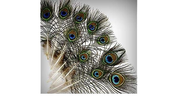 "25 Pcs MINI PEACOCK Natural EYE Feathers 4-10/"" Pads//Trim//Hat//Halloween//Costume"