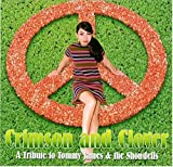 Crimson & Clover: Tribute to T by Various