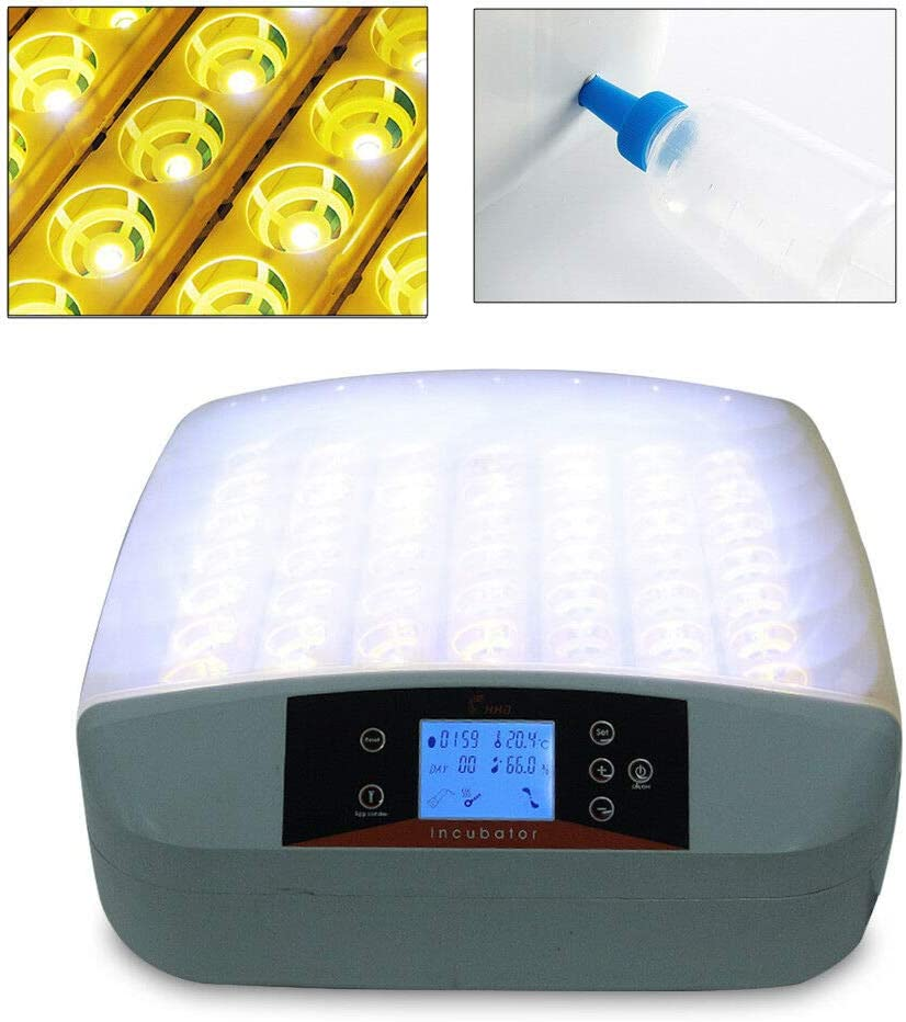H/ühnereier automatischer Brutschrank mit 56 Eiern BTdahong Eierbrutschrank mit Intelligent Digital Gefl/ügel with Light