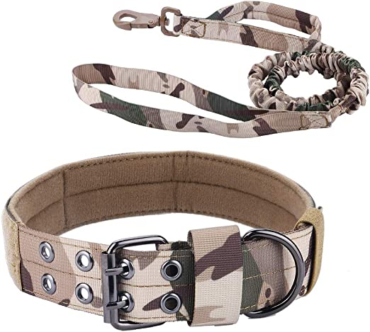 chede Military Adjustable Dog Collar and Bungee Dog Leash Set,with D-Ring & Buckle for Medium Large Dogs