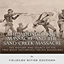 The Wounded Knee Massacre and the Sand Creek Massacre: The History and Legacy of the Two Most Notorious Indian Massacres Audiobook by  Charles River Editors Narrated by Scott Larson