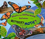 What's the Difference Between a Butterfly and a Moth?, Robin Michal Koontz, 1404855432