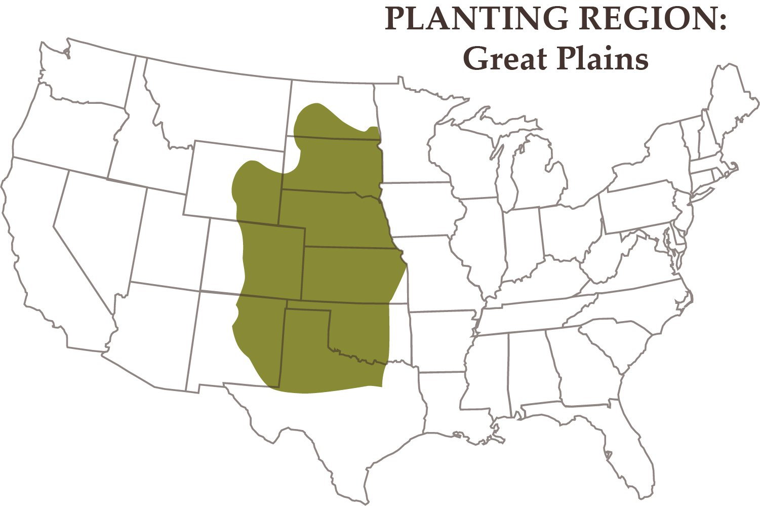 Nature's Seed 2.5 Acre Great Plains Poultry Pasture Blend by Nature's Seed (Image #3)
