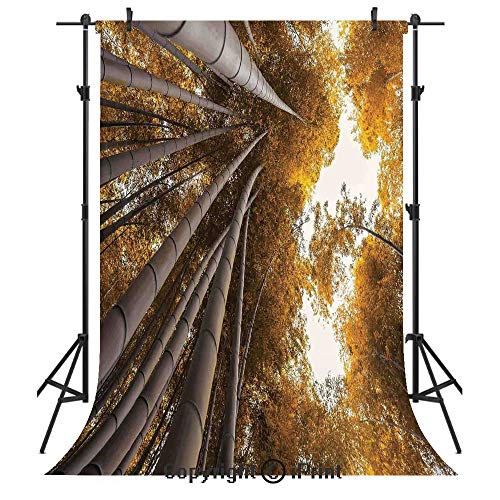 Lake Grove Satin - Bamboo House Decor Photography Backdrops,Bottom to Top Bamboo Grove Fall Landscape Potential for Improvement Symbol Print,Birthday Party Seamless Photo Studio Booth Background Banner 6x9ft,Yellow Brow
