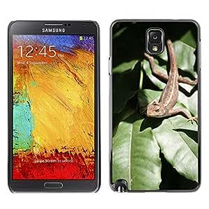 Cas Coq Case Cover // M00147885 Lagarto hoja Reptil Reptil Animal // Samsung Galaxy Note 3 III N9000 N9002 N9005