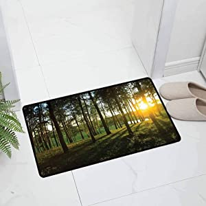 Forest Indoor Outdoor Kitchen Rugs and Mats Holiday Doormat Sunset in The Woods Autumn and River Comes into View at Distances for Entryway, 23.5 x 15.5 inch Green Yellow