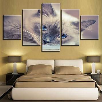 (Sin Marco) Impresiones Hd Decoración De Pared De Dormitorio 5 Unidades Animales Gatos Encantadores