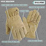 Leather Winter Work Gloves, 100-gram Thinsulate Insulation, Split Cowhide, Large (Wells Lamont 1063L)