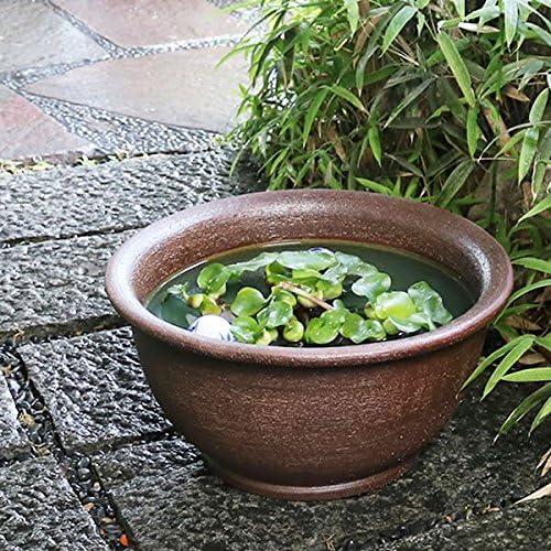 信楽焼 16号ケズリ鈴型すいれん鉢 睡蓮鉢 スイレン鉢 金魚鉢 水鉢 陶器 su-0110 (直径500×高さ255ミリ(外寸))