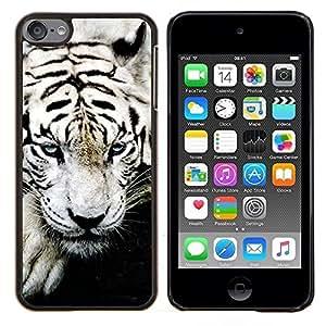 Queen Pattern - FOR Apple iPod Touch 6 6th Generation - tiger white paw big cat cute animal black - Cubierta del caso de impacto con el patr???¡¯???€????€??