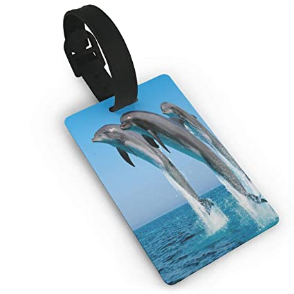 2 Pack Luggage Tags Dolphins Ocean Baggage Tag For Suitcase Bag Accessories