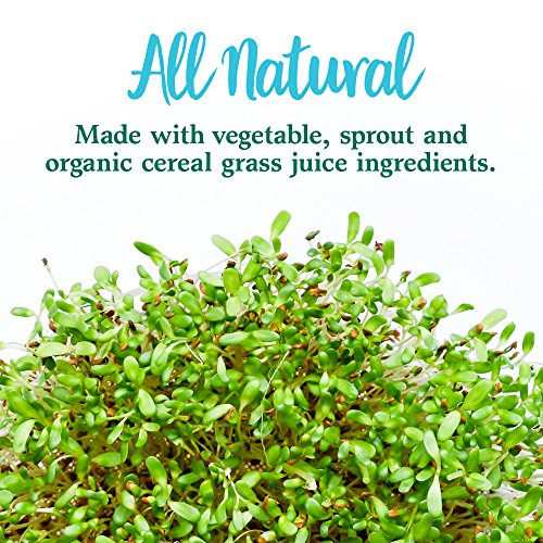 Garden of Life Whole Food Vegetable Supplement - Perfect Food Green Superfood Dietary Powder, 600g by Garden of Life (Image #7)