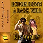 Echoes Down a Dark Well | Ric Wasley