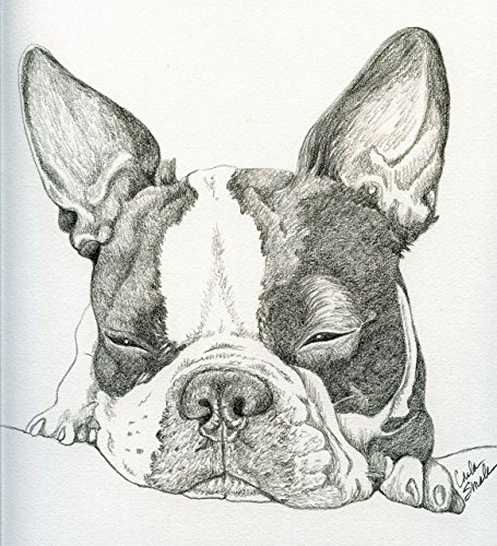 Custom Pet Portrait in Pencil-11 x 14-Carla Smale by Carlas Pet Portraits