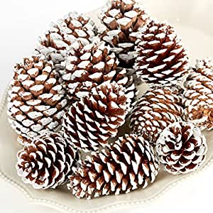 Christmas Holiday Snow Tipped Natural Pine Cones (Half Pound Bag)